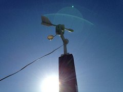 Wind vane with anemometer